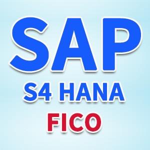 SAP S/4 HANA FICO 中文版PA 2019年